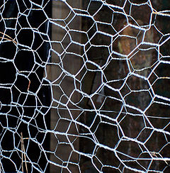 Carbon bonds in carbon fiber