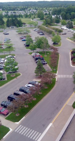 parking lot islands